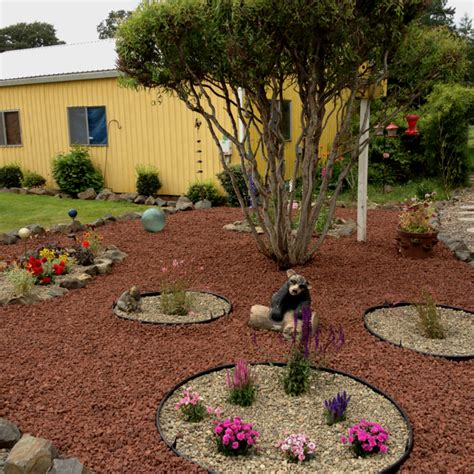 Yard With Decorative Rock Landscaping Ideas Blooming by My New Landscaped Yard With Lava Rocks And Small Flower