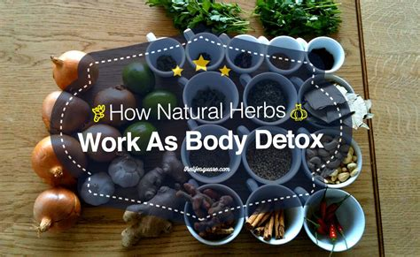 the best detox why herbal detox is the best way to clean your