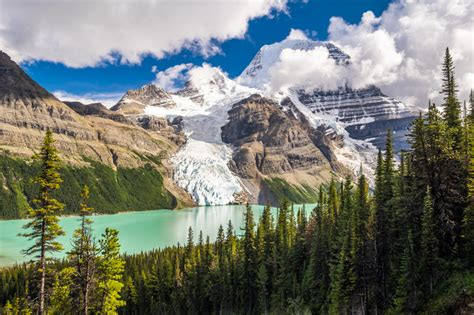 columbia canada winter snow and trees chrome refillable lighter 15621702 cdg robson provincial park canada jigsaw puzzle in great sightings puzzles on thejigsawpuzzles