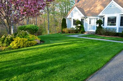 hydroseeding for commercial and residential properties throughout new england located on cape cod