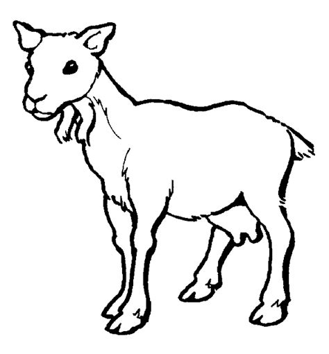 cute goat coloring page free cute goat coloring pages
