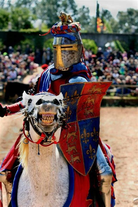 Joust Kidding by 1000 Images About War Jousting On