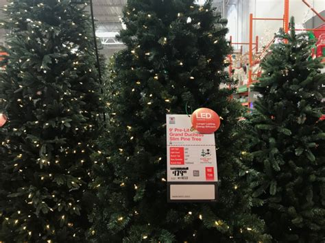 home depot trees coupon home depot tree coupon rainforest islands ferry