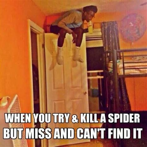 Killing Spiders Meme - when you try and kill a spider jokes memes pictures