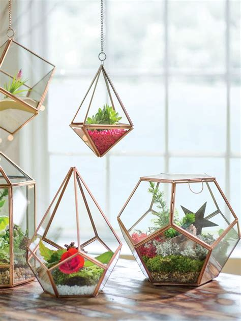 kitchen window terrarium terrarium glass terrarium and be nice on pinterest