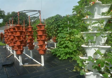 Vertical Gardening Systems Farm Goes Vertical To Net Yields