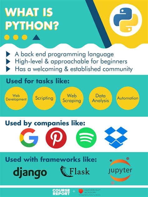 what is a python everything a beginner needs to know