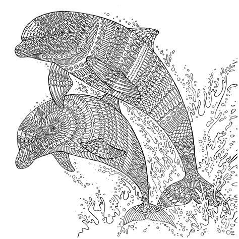 dolphin mandala coloring page the aquarium colouring book dolphins richard merritt