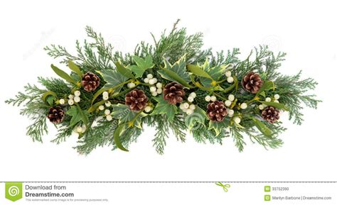 images of christmas greenery pine cone clipart greenery pencil and in color pine cone