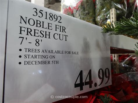 fresh cut noble fir christmas tree