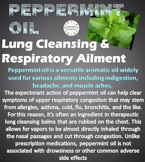 Essential Oils For Lung Detox by Pin By Coolpupche Guevara On Health