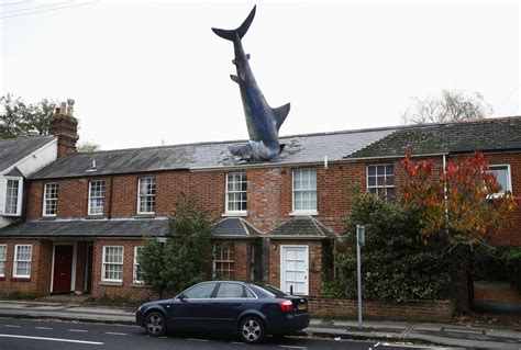 shark house weirdest houses around the world 2 business insider