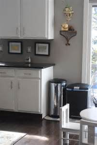Gray Kitchen Walls by 25 Best Ideas About Grey Kitchen Walls On Pinterest