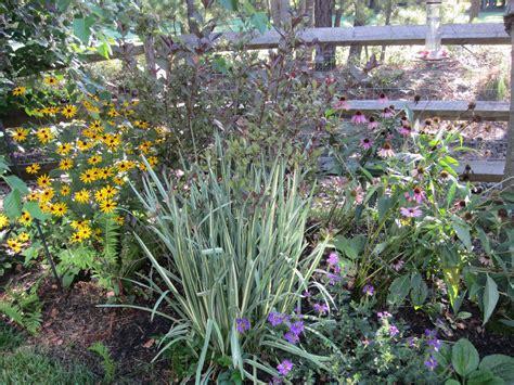 hightechlandscapes new jersey landscape design medford new jersey landscape plantings garden graphics