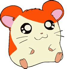 hamtaro animations