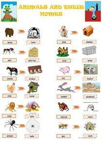 animal homes animals and their homes worksheet free esl printable