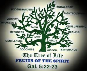 12 fruits of the tree of the tree of