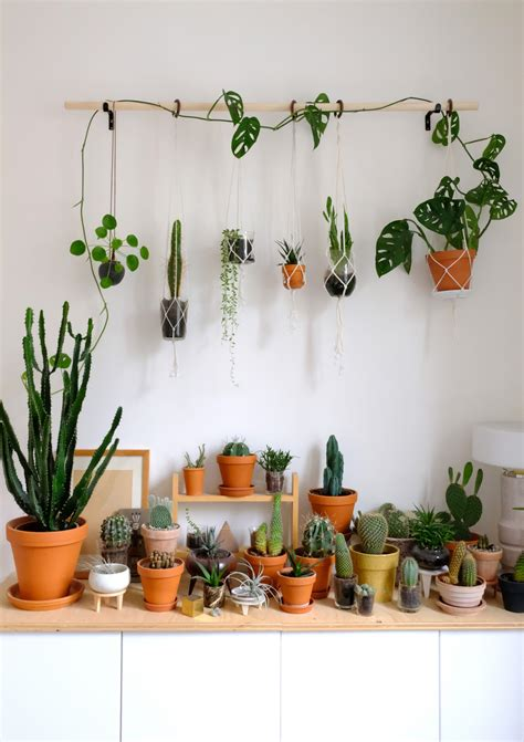 diy hanging plant wall  macrame planters