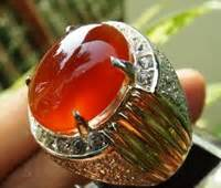 Batu Akik Jeruk Limau perbedaan batu raflesia dan cempaka madu