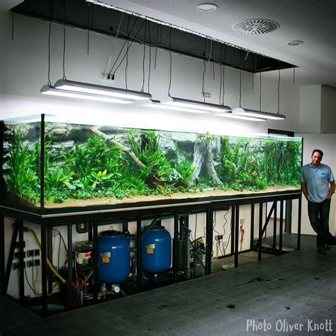 Oliver Knott Aquascaping by Oliver Knott S 16 Tank Aquascaping