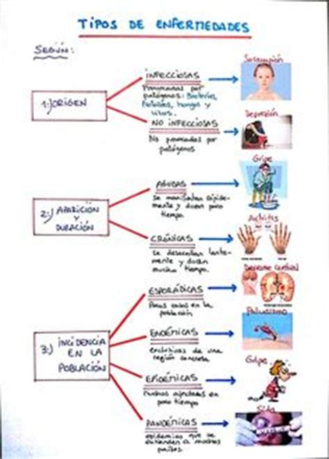 imagenes mentales definicion 1000 images about mis esquemas y mapas mentales on