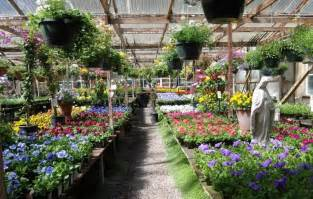 5 plant nurseries on the peninsula to start your spring