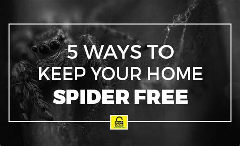 how to keep spiders out of your bed 5 ways to keep spiders out of your home blog storage victoria