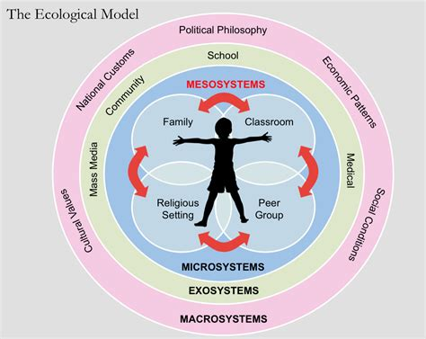Bronfenbrenner Theory Essay by Bronfenbrenner Theory Essay Ecological Systems