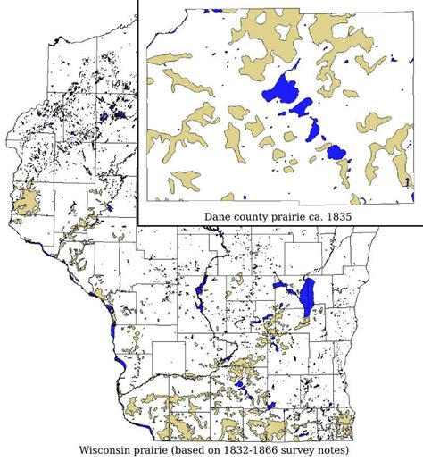 Dane County Records The Prairies Of The Dane County Section Of Pheasant Branch Conservancy