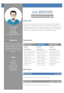 Free Curriculum Vitae Template Word by Cv Word Le Dif En Questions