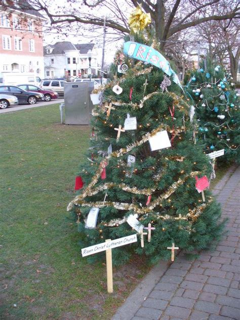 28 best plymouth christmas trees plymouth christmas