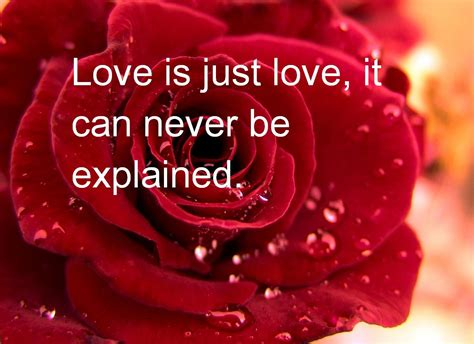 Valentine Quote | valentines day quotes 2013 new latest pictures