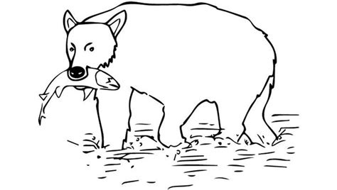 white bear coloring pages bear template animal templates free premium templates