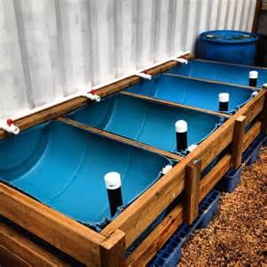 Aquaponics Easy: Backyard aquaponics in canada