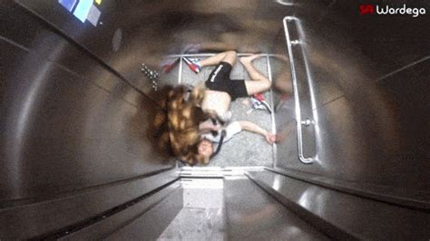 spider puppy mutant prank spider gif gif animation animated pictures