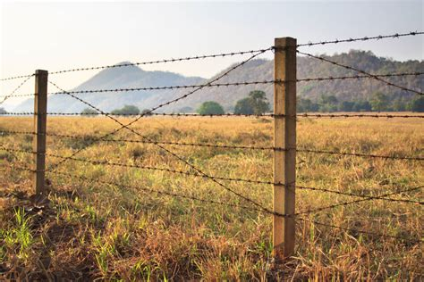 barbed wire fence 101 fence designs styles and ideas backyard fencing and more