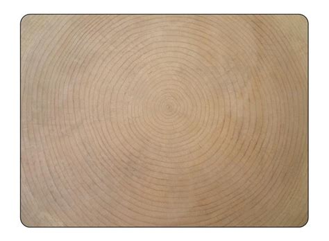 placemats co uk pimpernel concentric wood placemats