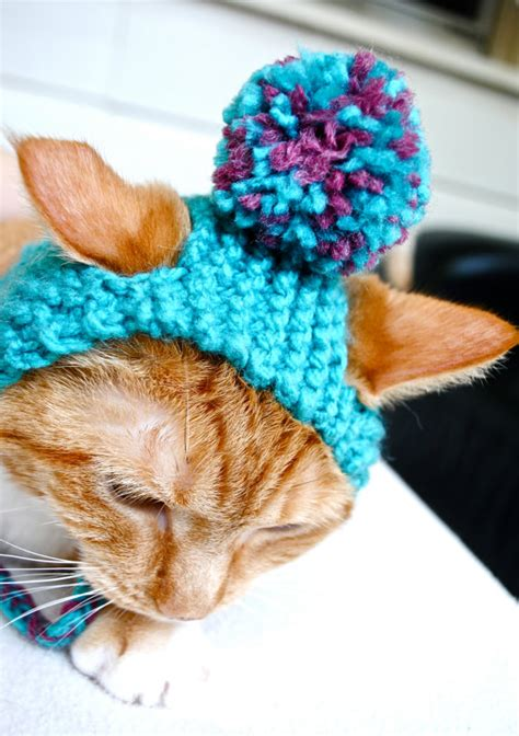 knit cat hat cat hats rescue bad fur days mousebreath magazine