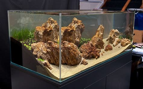 oliver knott aquascaping 17 best ideas about corner aquarium on pinterest