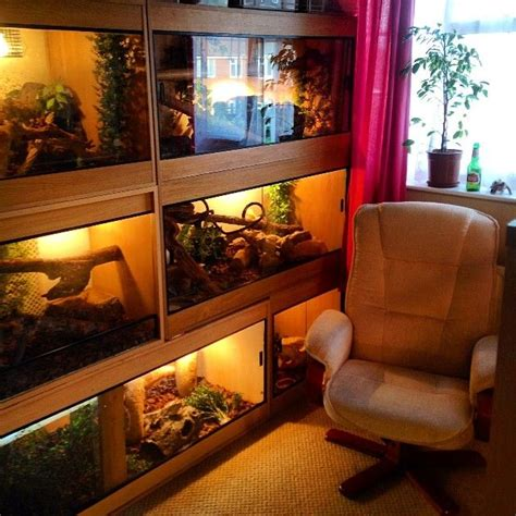 Reptile Rooms by 1000 Images About Tanks And Stuff On