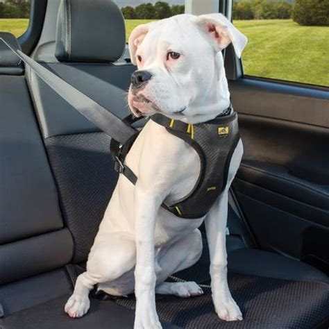 best harness for dogs car harness impact car safety harness