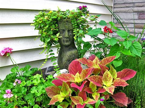 container gardening florida 17 images about florida container gardening and other