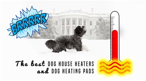 heating pad for dog house 5 best dog house heaters for winter 2017 edition