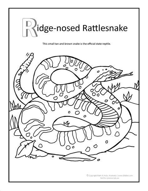 coloring page rattle rattle snake free colouring pages