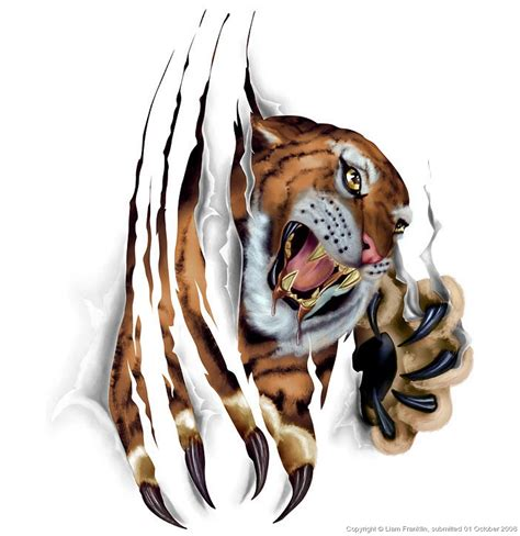 cool tiger tattoo designs ripped skin tiger design for