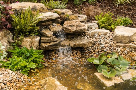 triyae build a garden pond waterfall various