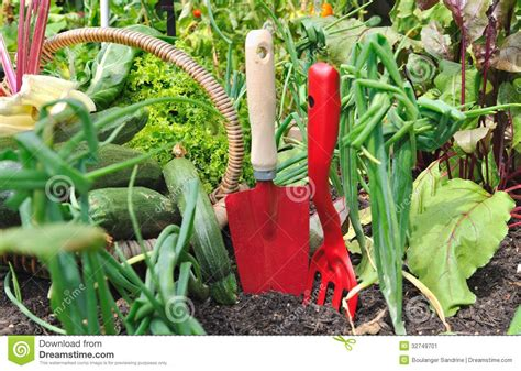 Red Tools And Vegetables Stock Image Image 32749701 Vegetable Gardening Tools
