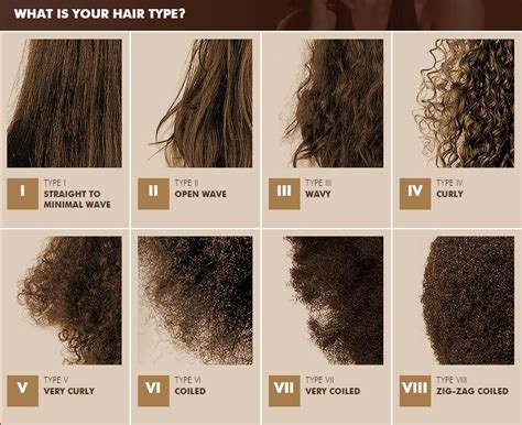 Hair Types Chart For Black by American Hair Types Hairstyles