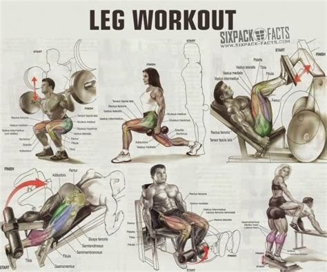 best workouts the best leg workout plan healthy fitness