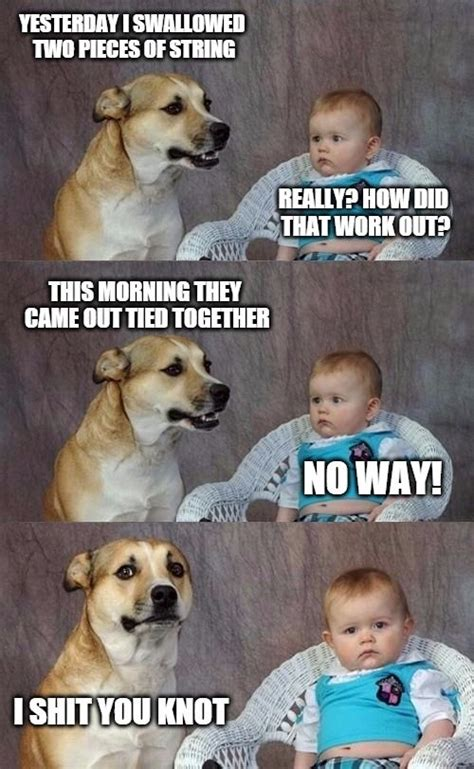 Gay Dog Meme - and it s out of there yesterday i swallowed two pieces